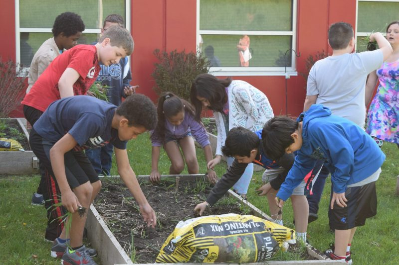 Spalding Park Environmental Sciences Elementary Garden