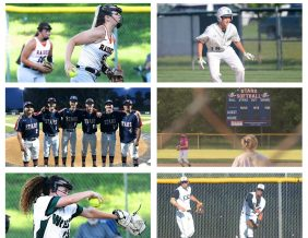 Baseball and Softball preview